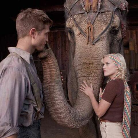 De l'eau pour les éléphants: la piste aux étoiles du cinéma