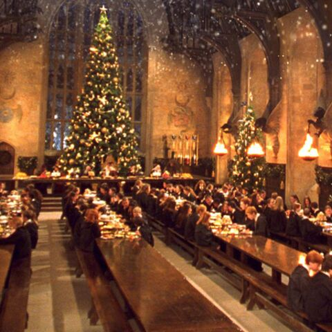 Harry Potter entre au musée