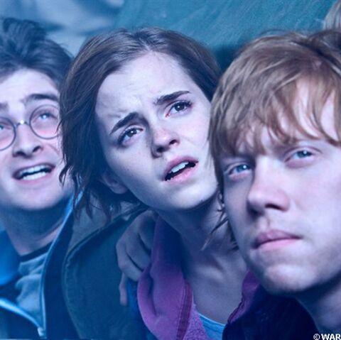 Harry Potter et le dernier tapis rouge