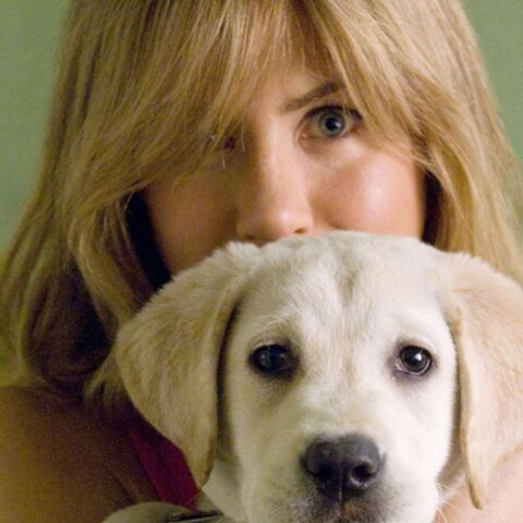 Jennifer Aniston: les chiens, son refuge