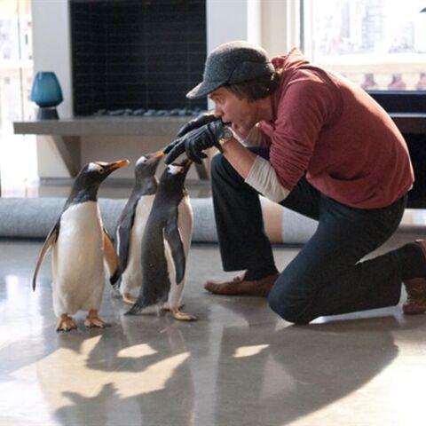 Mr Popper Et Ses Pingouins: une comédie complètement givrée!