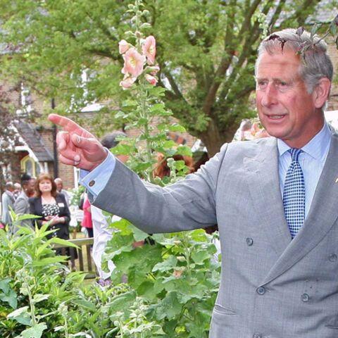 Le prince Charles: l'écologie, son combat
