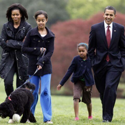 Avant Bo, il y avait Max, Tinckerbell, et les autres…