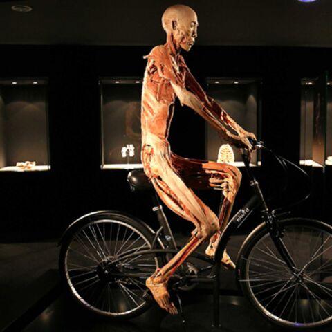 Pour l'expo Our Body, c'est mort