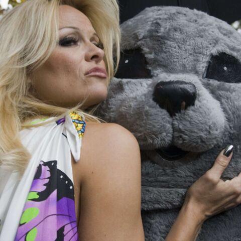 Pamela Anderson, la complainte du phoque à la PETA