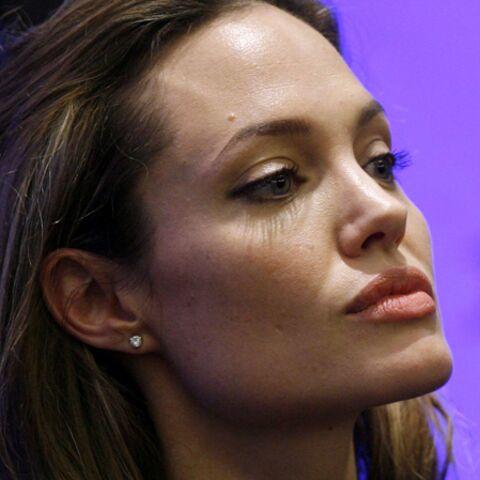 Angelina Jolie salie par deux livres