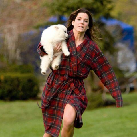 Sandra Bullock: quand Jesse vide son sac, elle fait ses valises