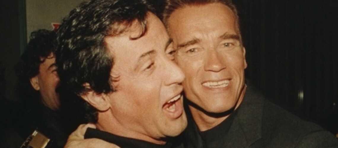 Schwarzenegger et Stallone mis au tapis par des chauve-souris