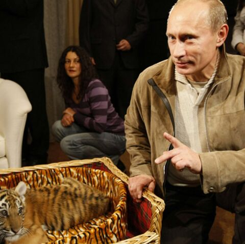 Vladimir Poutine délaisse sa tigresse