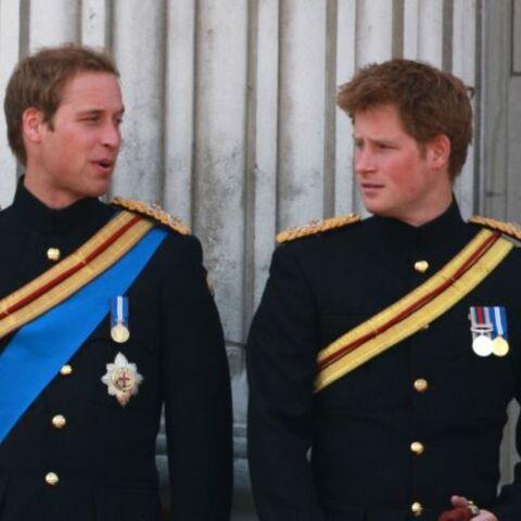 William et Harry bientôt colocataires!