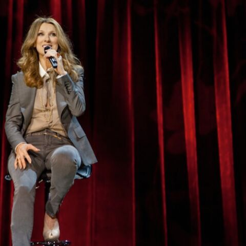 T'as le look… Céline Dion