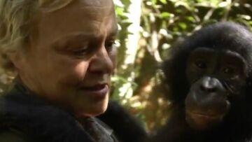 VIDEO – Muriel Robin émue aux larmes par un bonobo