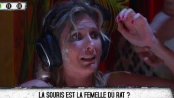 VIDEO – Caroline Ithurbide en bikini à Fort Boyard, terrifiée face aux serpents et aux souris dans l'épreuve du spa