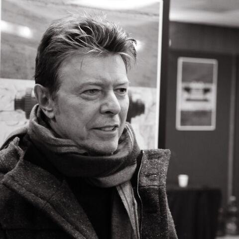 David Bowie plonge dans l'univers de Bob L'Eponge