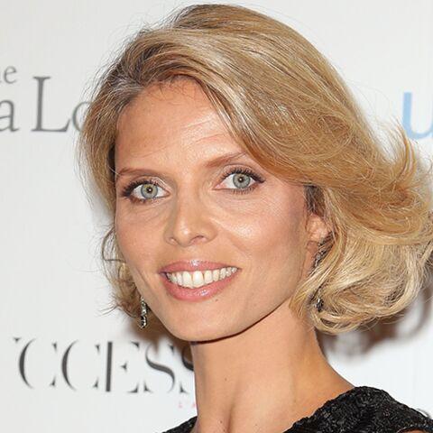 Sylvie Tellier, Miss bikini?