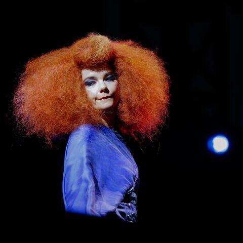 Björk poursuivie en justice par son ex-compagnon