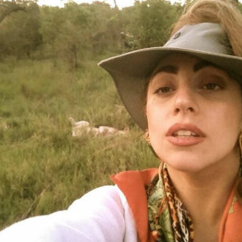 Photos- Lady Gaga en safari