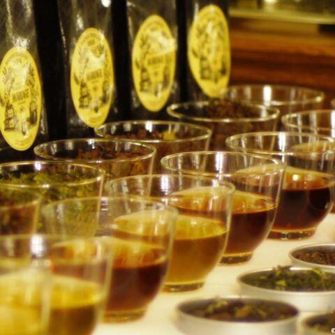 Mariage Frères: petite leçon de dégustation de thés