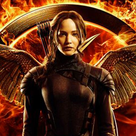 Hunger Games va avoir son propre parc d'attraction