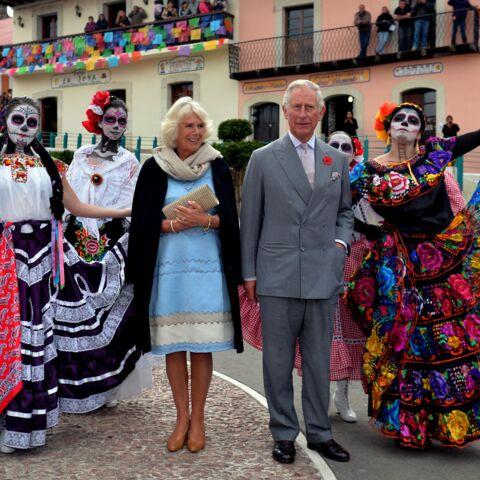 Photos- Charles et Camilla: visite haute en couleurs