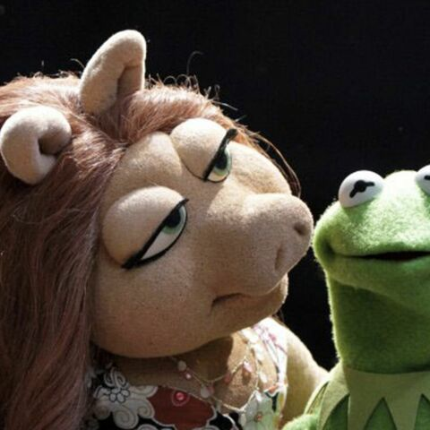 Kermit a déjà une nouvelle petite amie