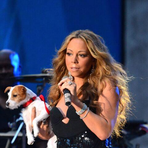 Mariah Carey: ses chiens prennent des vacances à 145 000 euros