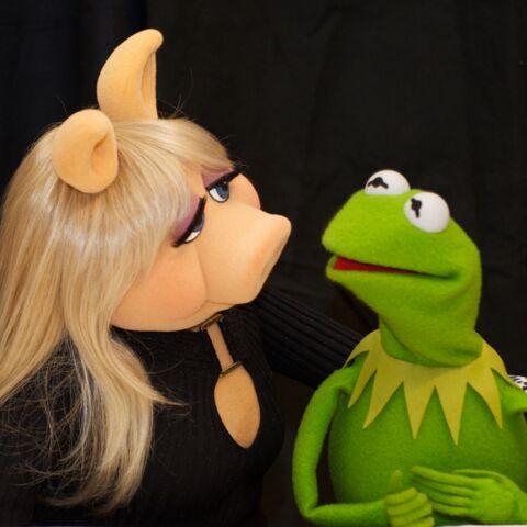 Drame: Peggy et Kermit, c'est fini