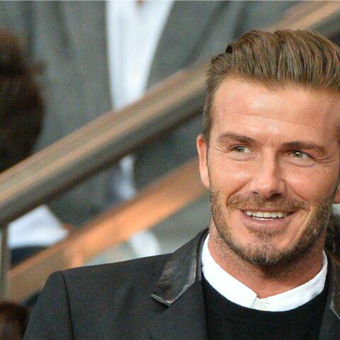 David Beckham, le mâle à l'état pur