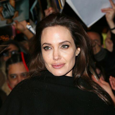 Angelina Jolie «n'a jamais prétendu être experte en quoi que ce soit»