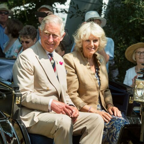 Découvrez quelle série passionne la famille royale