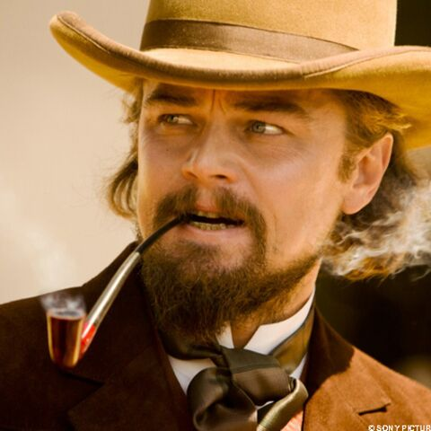 Leonardo DiCaprio un comédien pour l'Histoire