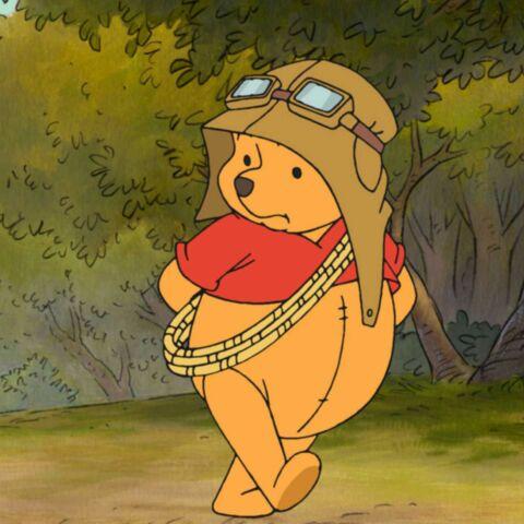 La vérité sur Winnie L'Ourson