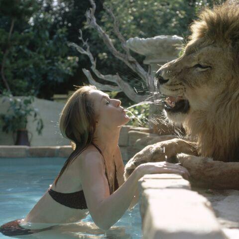 Photos – Les «Mowgli» du showbiz