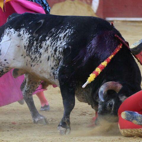 Le torero Victor Barrio décède pendant une corrida