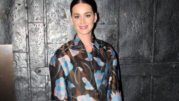 Katy Perry et Lenny Kravitz, une partition commune