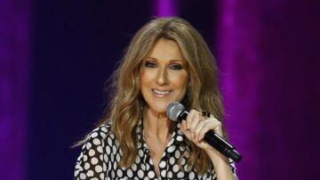 Céline Dion: Une chanson signée Francis Cabrel et Serge Lama