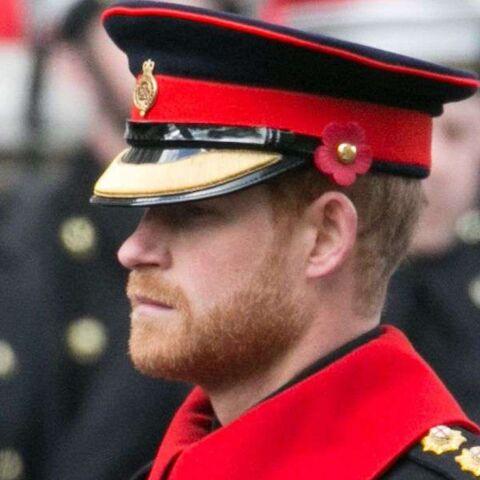 PHOTOS – La boulette du prince Harry qui déplaît aux militaires