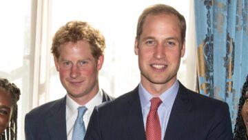 Le bel hommage des princes William et Harry à Lady Diana