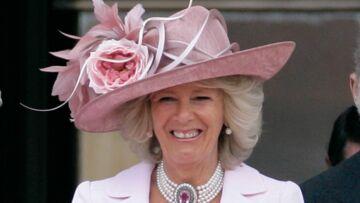 Camilla devient apicultrice