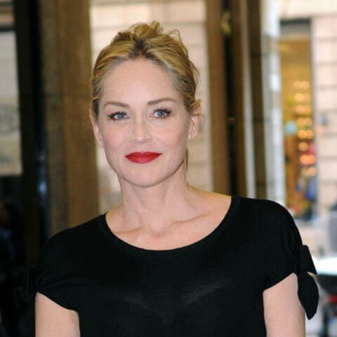 Sharon Stone, son nouveau it-bag