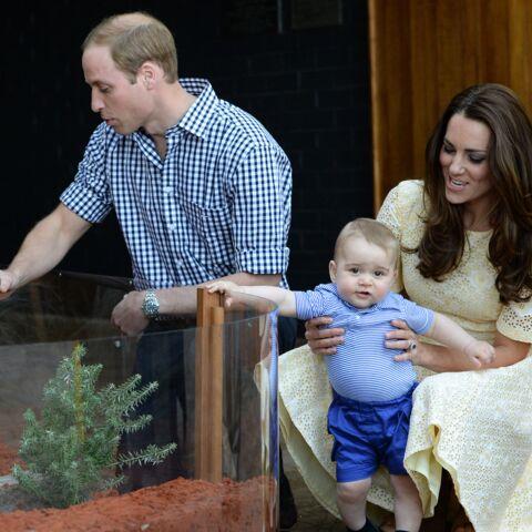 Prince George, les coulisses de sa première année