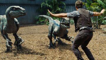 Jurassic World: bientôt la suite