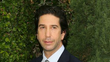 David Schwimmer a eu du mal à gérer le succès de «Friends»