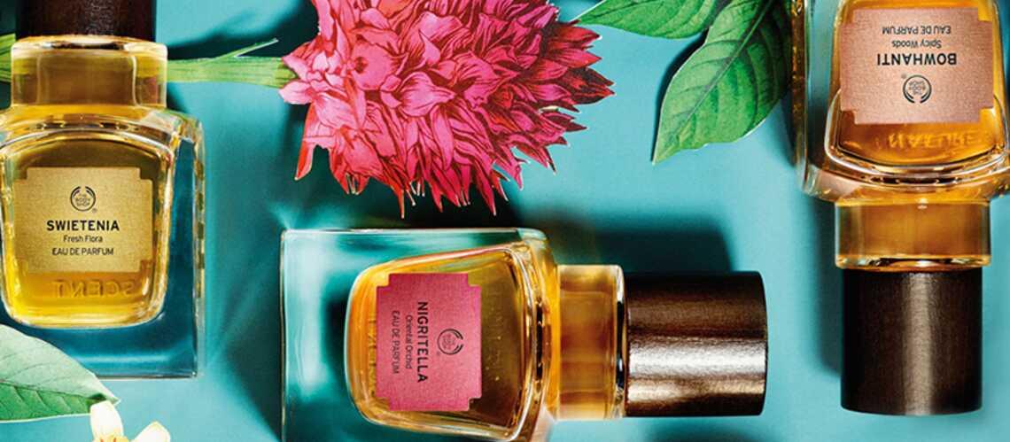 Et Précieuses Fragrances The Dévoile Gala Shop 5 Body Rares nk80PwXO