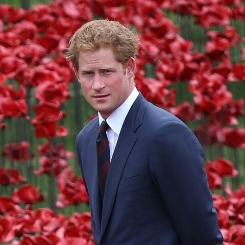 Prince Harry, roi des roux?