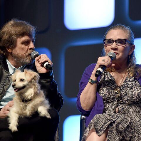 Convention Star Wars: le résumé en cinq épisodes