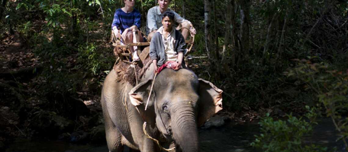 Denis Brogniart: avec Hortense, il explore encore et Angkor!