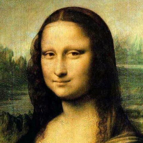 Qui es-tu Mona Lisa?