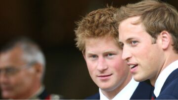 Les Princes William et Harry dévoileront une nouvelle statue de Lady Di 20 ans après sa mort