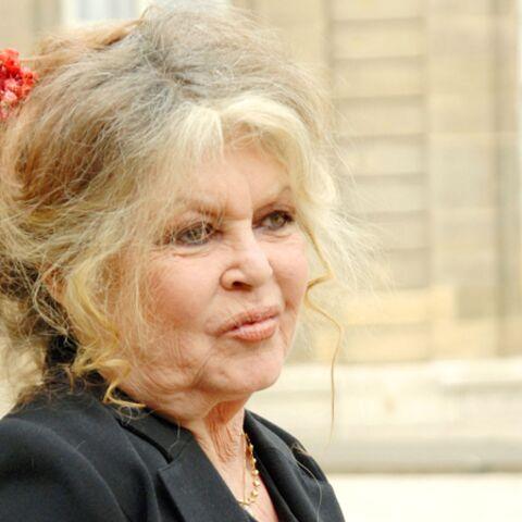 """Brigitte Bardot: """"Je n'ai pas le temps de me regarder le nombril"""""""